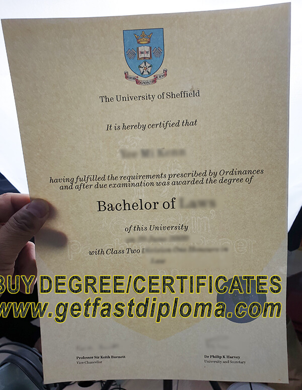 University of Sheffield degree